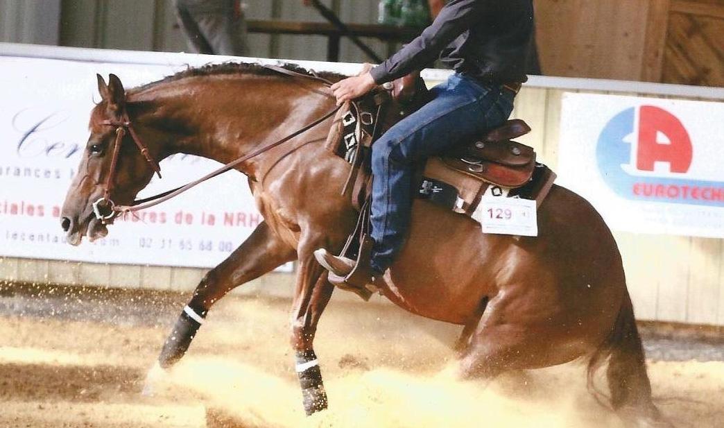 La ferrure du cheval de reining