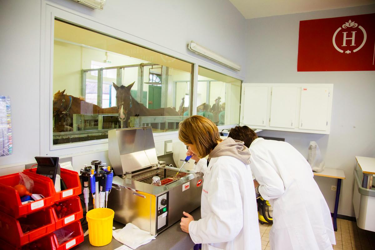 Centres de collecte : conditions d'agrément sanitaire