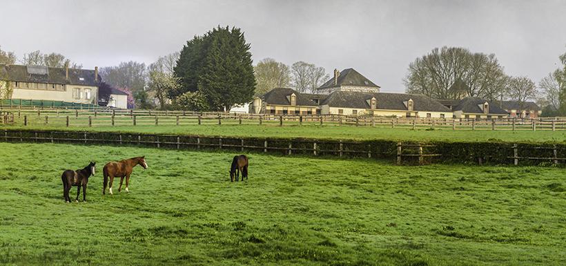 Acheter un terrain agricole : à quel prix ?