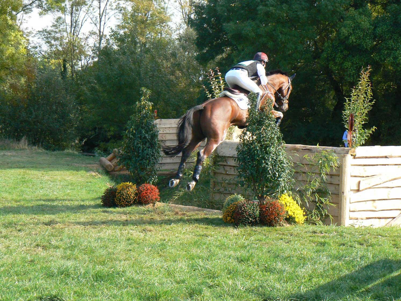Définir les séances d'entraînement du cheval