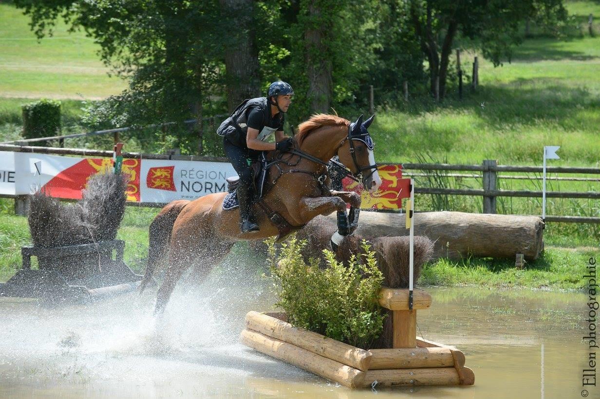 Le cheval de concours complet, cet athlète que l'on ignore