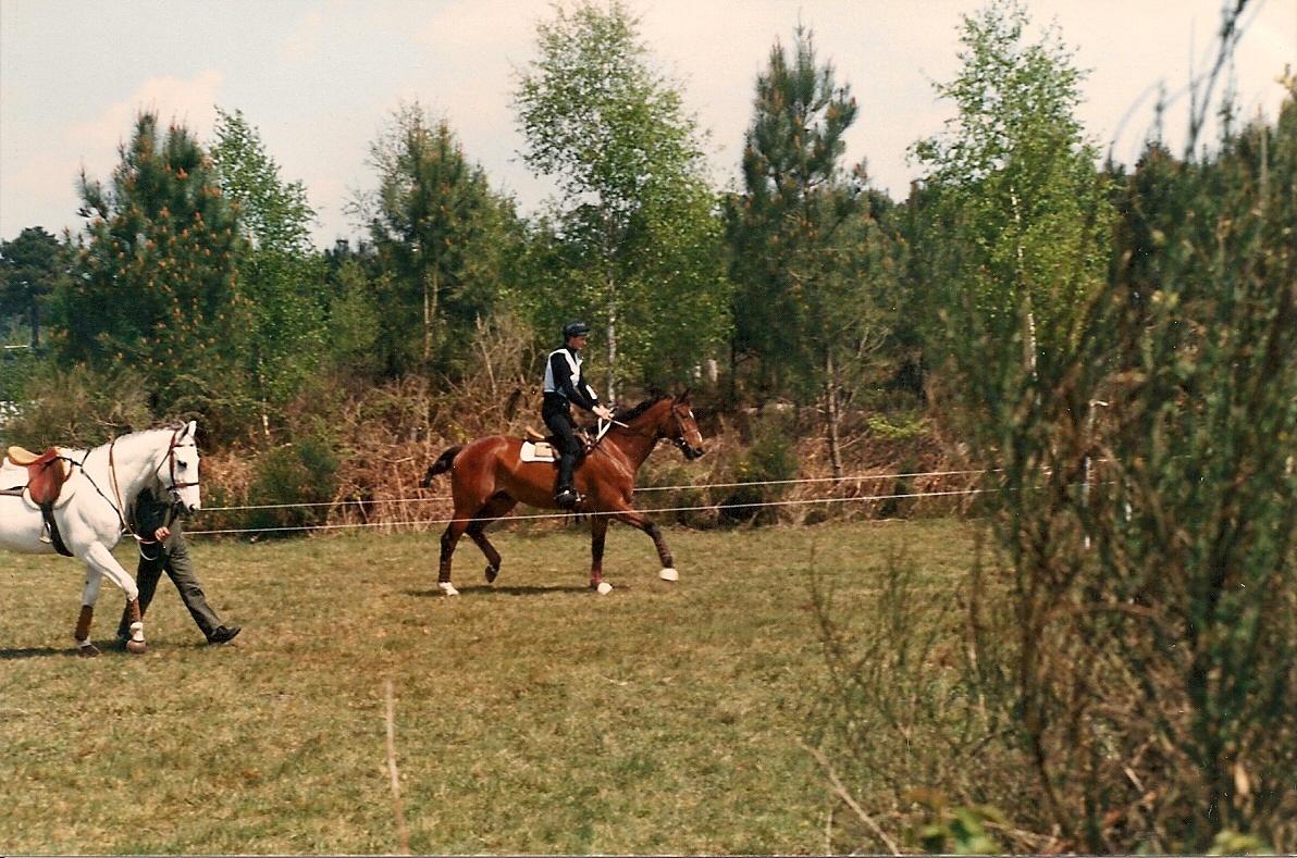 La récupération active chez le cheval de CCE