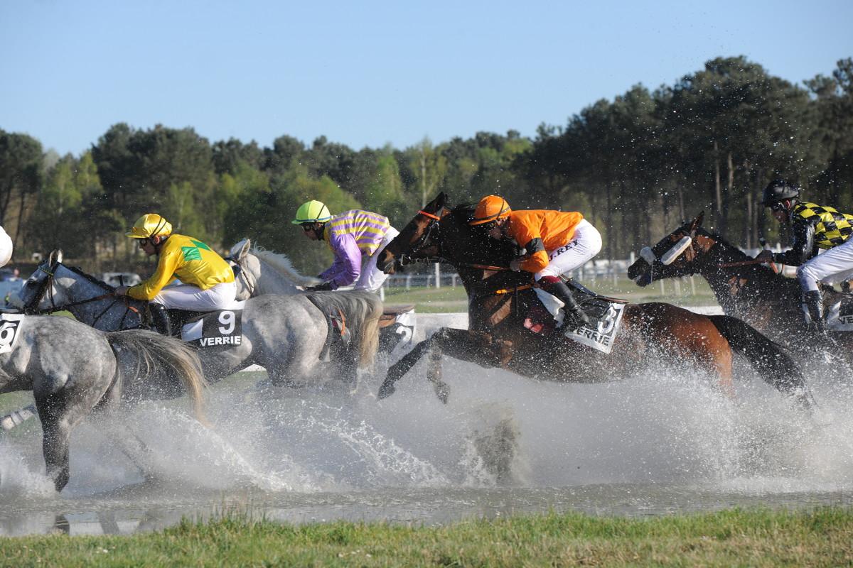 Entraîneur de chevaux de course