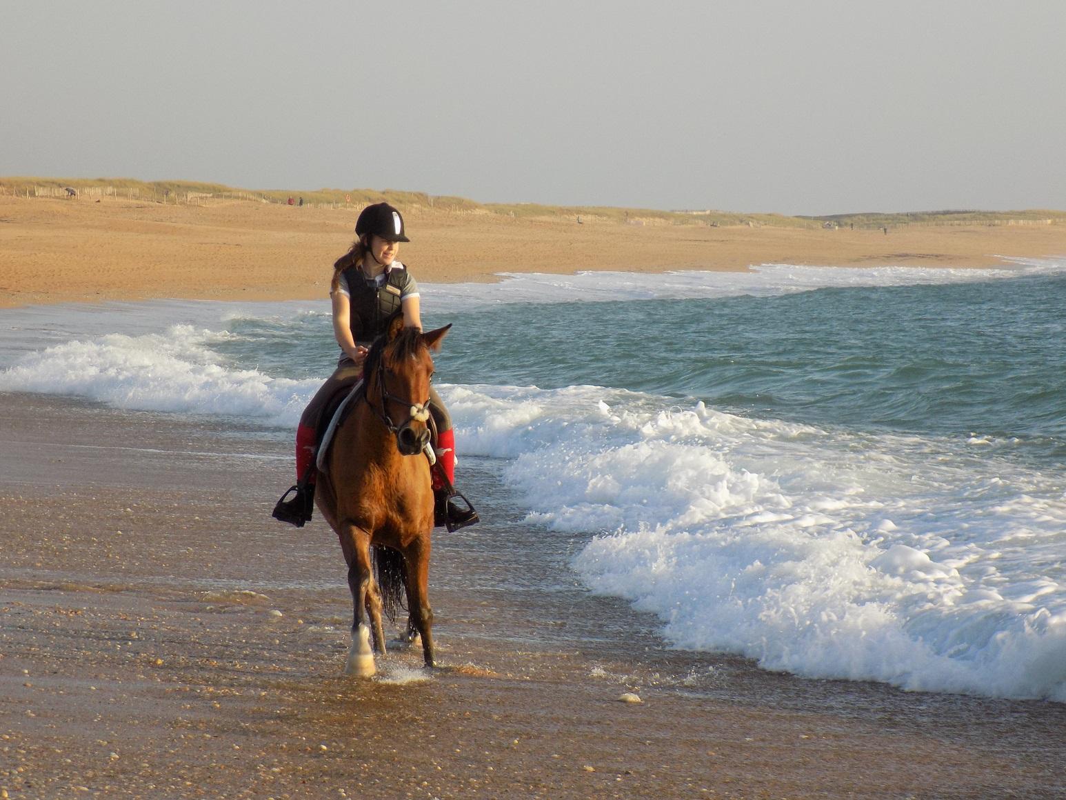 Monter à cheval sur la plage : Mémento du pratiquant