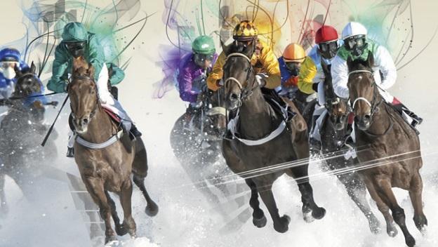 Suisse : utilisation des chevaux