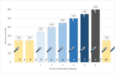 protocole du test d'effort à 6 paliers de galop de 3 minutes séparés par 1 minute de pas.