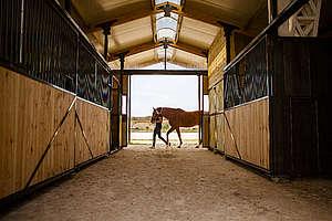 cheval femme ecurie © A. Bassaler