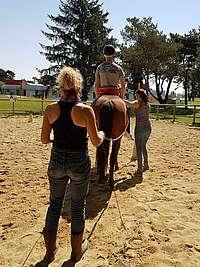 hippothérapie, cheval mené aux longues rênes