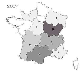 Les poulains Shagya nés en France et immatriculés