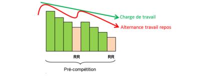 exemple d'organisation sur une période de Pré-compétition (Pré-concours) de 2 cycles de 4 microcycles chacun dont 1 de repos relatif (RR) permettant d'alterner travail et repos. Diminution de la charge de travail mais intensité supérieure en respectant l'alternance travail / repos).