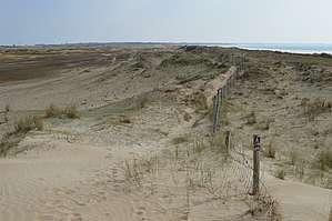 Le cavalier doit veiller à respecter les milieux naturels du littoral © F. Lumalé