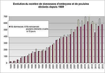 Evolution transferts embryons équins 1989-2015