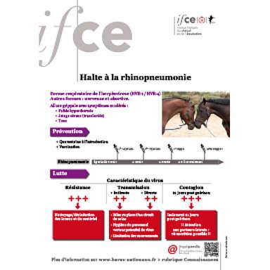 Halte à la rhinopneumonie