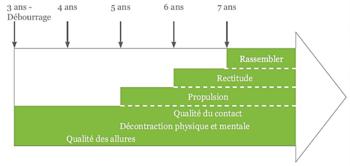 Figure 2 : Temporalité de l'échelle de progression