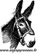 Logo Association nationale ânes et mulets des Pyrénées