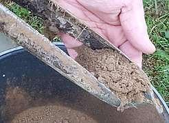 prélèvement de terre à l'aide d'une tarière