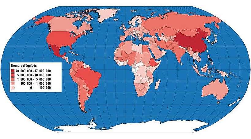 Répartition mondiale de la population d'équidés.