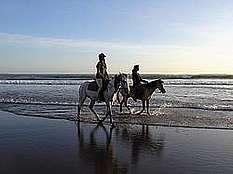 Balade à cheval sur plage © Pixabay