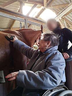 Pansage d'un cheval avec une élève du Lycée agricole de Laval