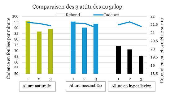 Comparaison des 3 attitudes au galop - allure naturelle/rassemblée/en hyperflexion