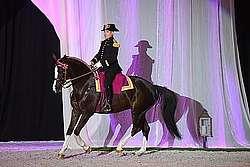 Le cheval fonctionne avec toute sa ligne de dessus © A. Laurioux