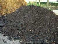Compost mûr, fumier de cheval