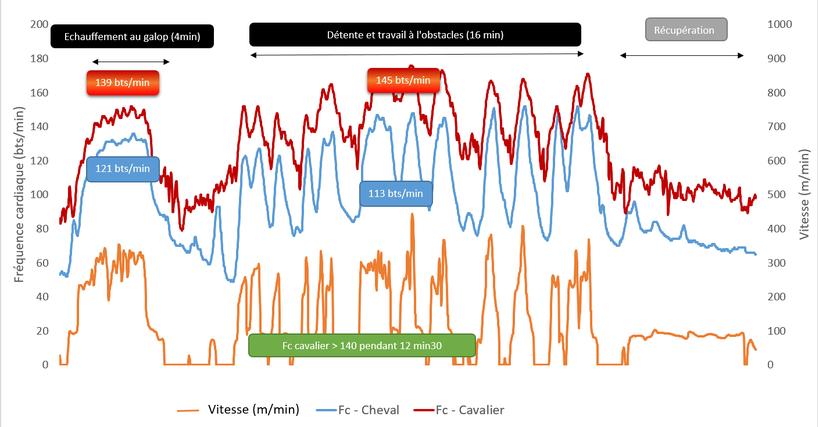 Graphique 5 - Enregistrement de la fréquence cardiaque d'un cavalier professionnel effectuant une séance de travail à l'obstacle.