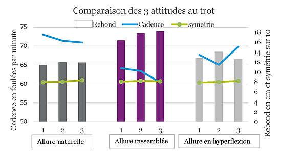 Comparaison des 3 attitudes au trot - allure naturelle/rassemblée/en hyperflexion