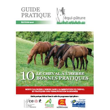 Le cheval à l'herbe : les 10 bonnes pratiques