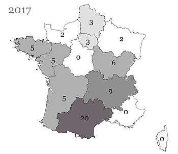 Les poulains Appaloosa nés en France et immatriculés