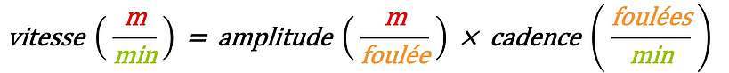 Equation reliant la vitesse, l'amplitude et la cadence