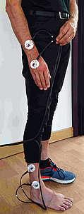Mesure avec l'impédancemètre Z-Métrix® chez l'homme © IFCE
