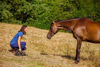 Relation cheval et homme