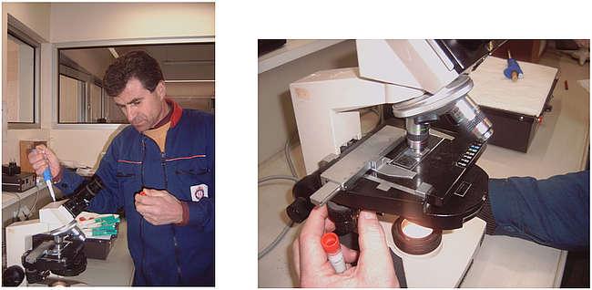 Le contrôle des doses préparées, après 24 et 48 heures permet d'apprécier la qualité de survie des spermatozoïdes et la vivacité de leurs déplacements