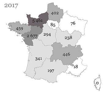 Les poulains Trotteur Français nés en France et immatriculés