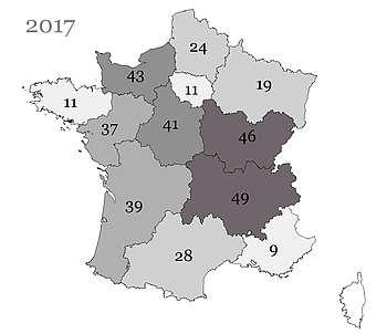 Les poulains Welsh nés en France et immatriculés