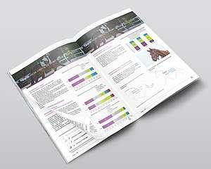 Le marché du cheval de sport importé en France