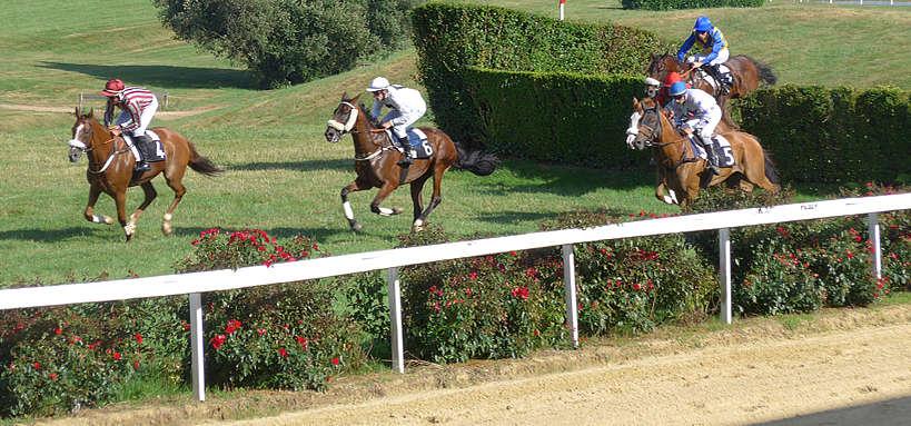 course sur hippodrome