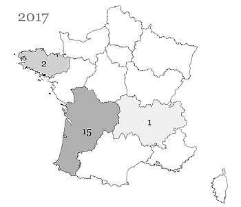 Les poulains Crème nés en France et immatriculés