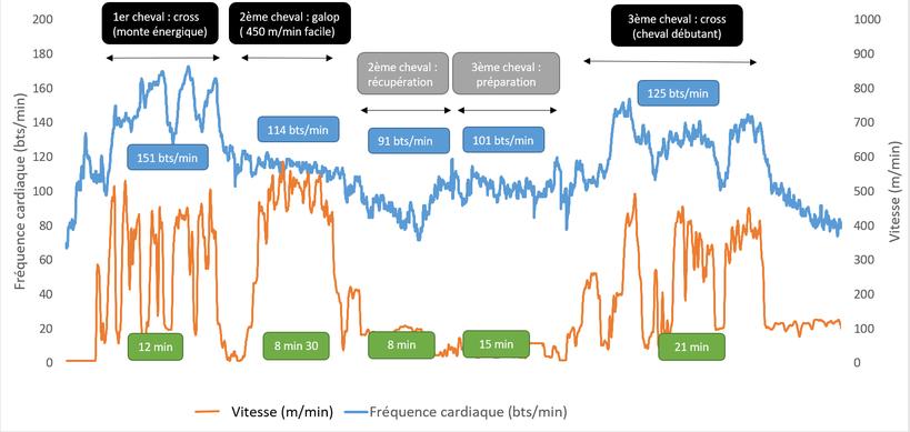 Graphique 4 - Enregistrement de la fréquence cardiaque d'un cavalier professionnel enchaînant sur une heure et demie le travail de trois chevaux sur le cross et au cours d'un galop.
