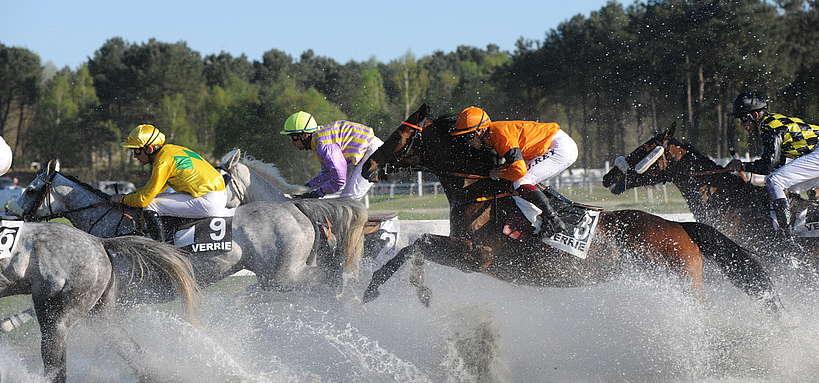 Chevaux de course avec passage d'eau