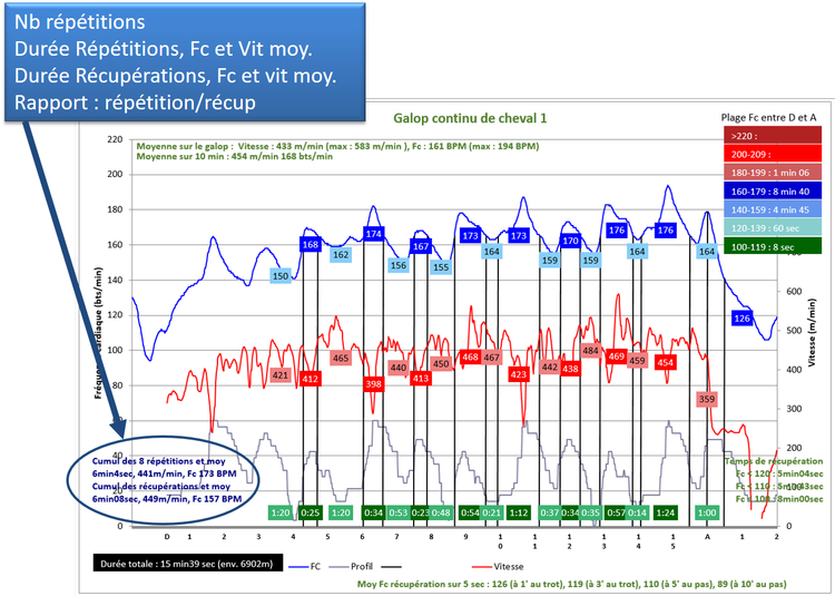Détermination du cumul des durées des phases dures, de récupération, des vitesses et FC moyennes