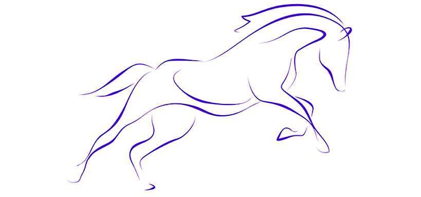 Visuel cheval dessiné