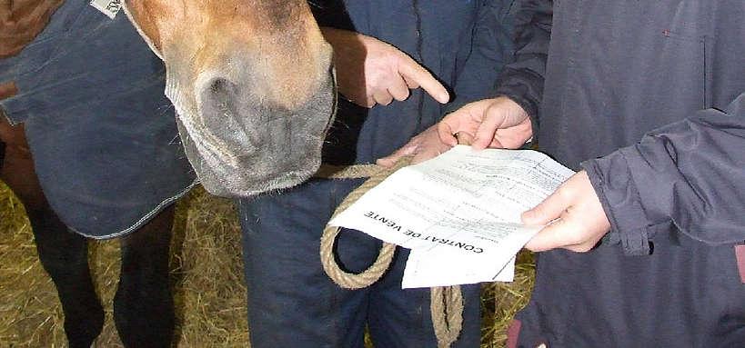contrat entre un propriétaire et un éleveur © F. Grosbois